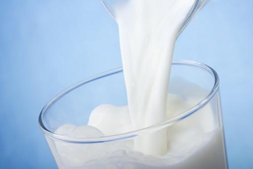 Milch - gesund oder schädlich?