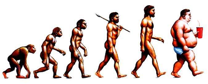 Evolution: Der letzte Schritt ging schief