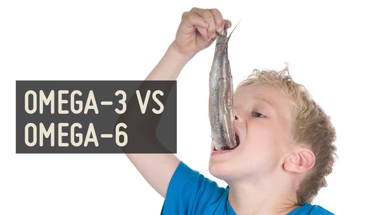Omega-3 vs Omega-6: überlebenswichtige Fettsäuren