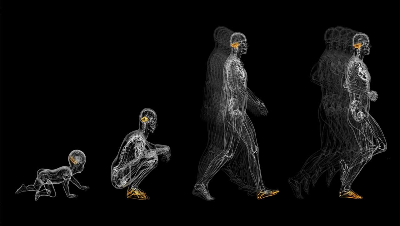 Barfußlauf – der richtige Laufstil für den Menschen