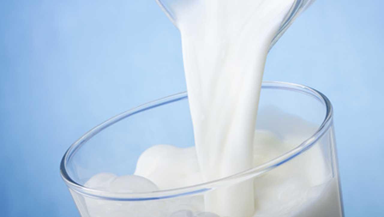 Paleo Ernährung und Milch