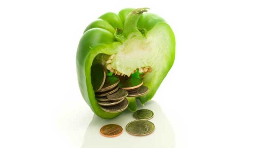 Paleo Geld Budget Sparen