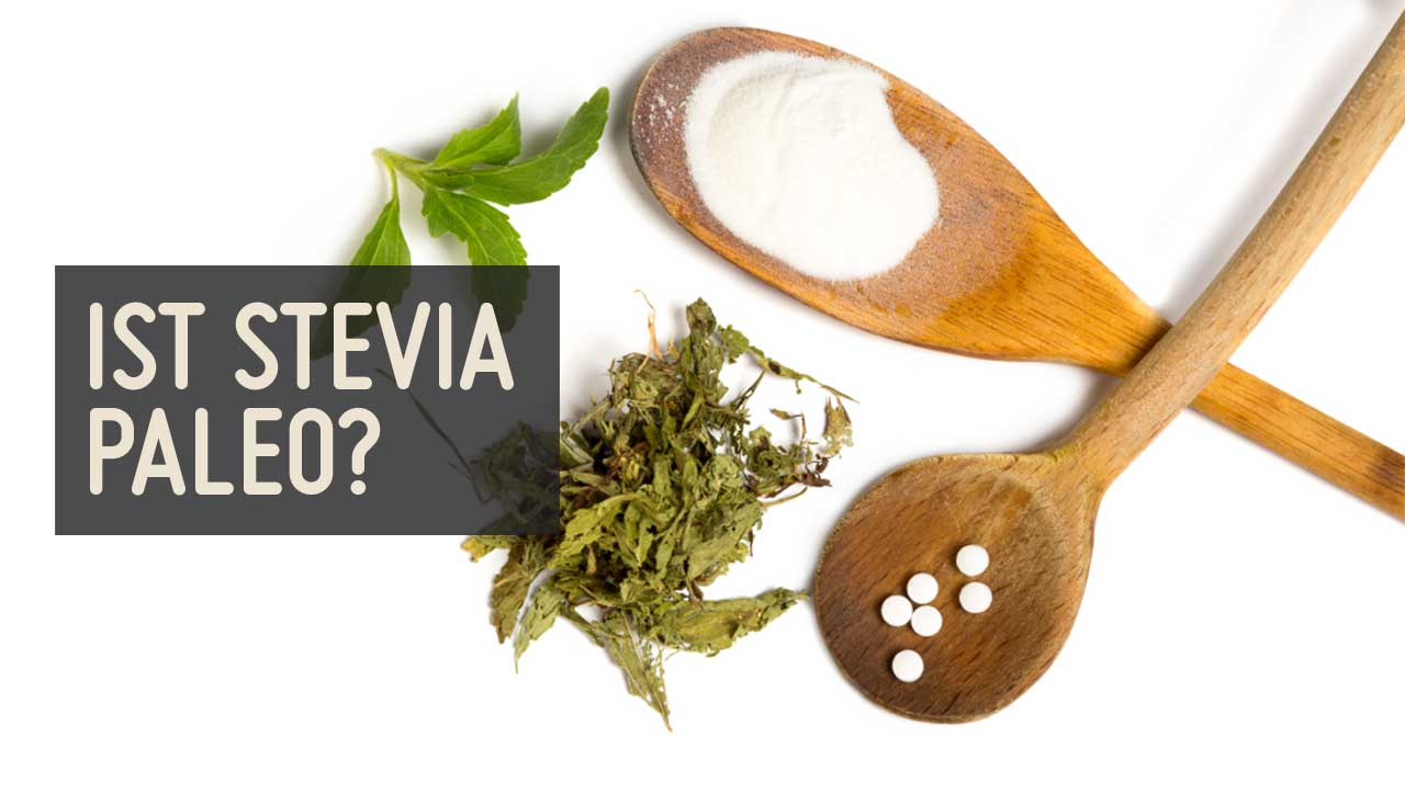 Gesund oder ungesund – ist Stevia Paleo?