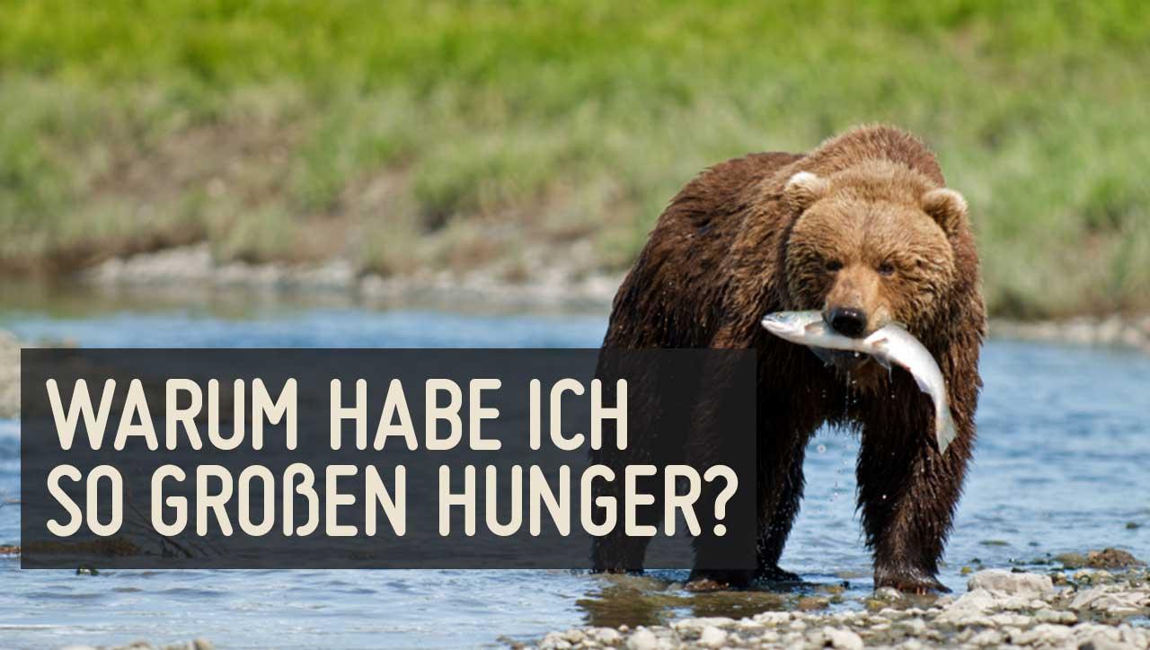 Warum habe ich so großen Hunger?