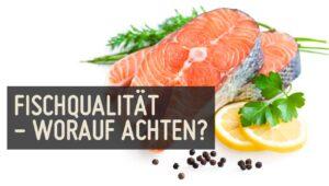 Fisch Qualitaet Fischqualitaet MSC Siegel Greenpeace