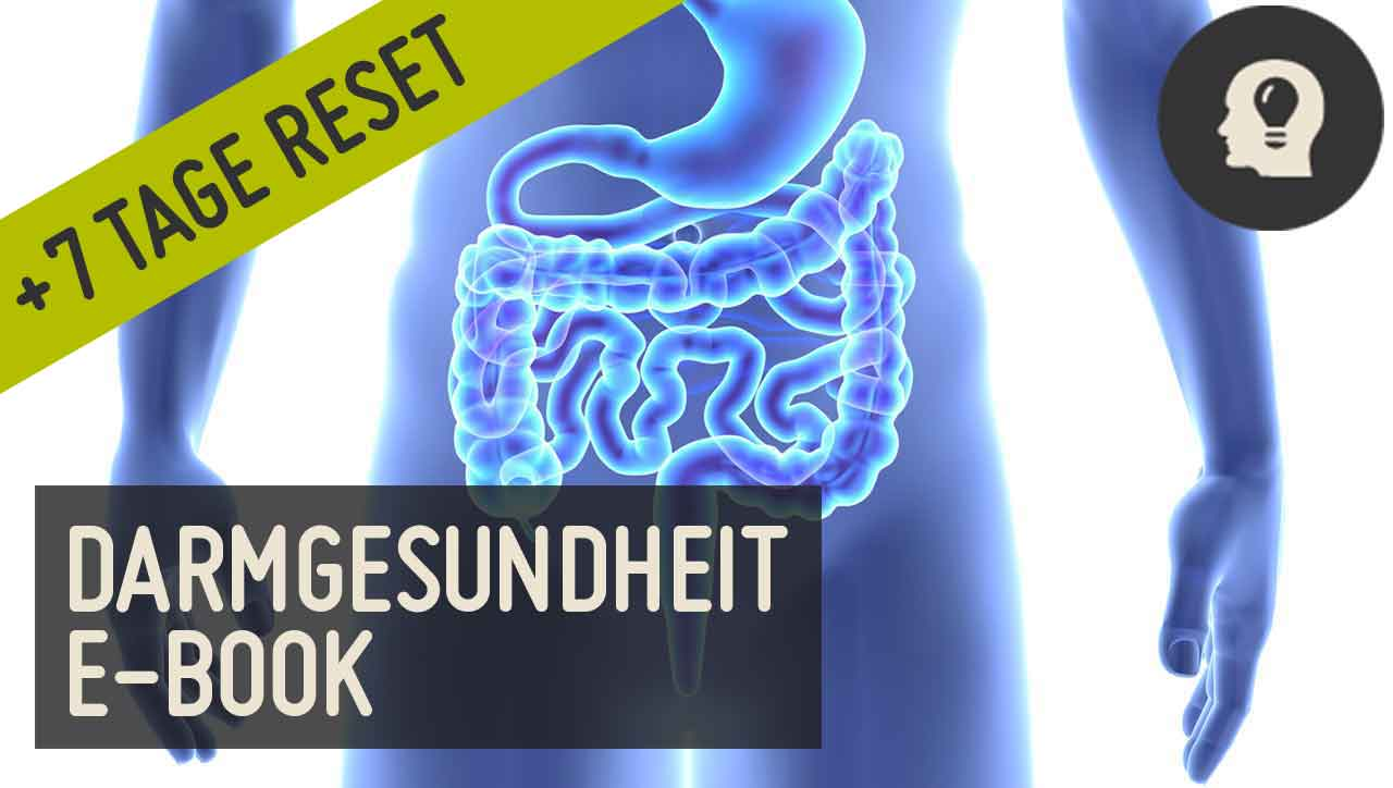 Darmgesundheit E-Book