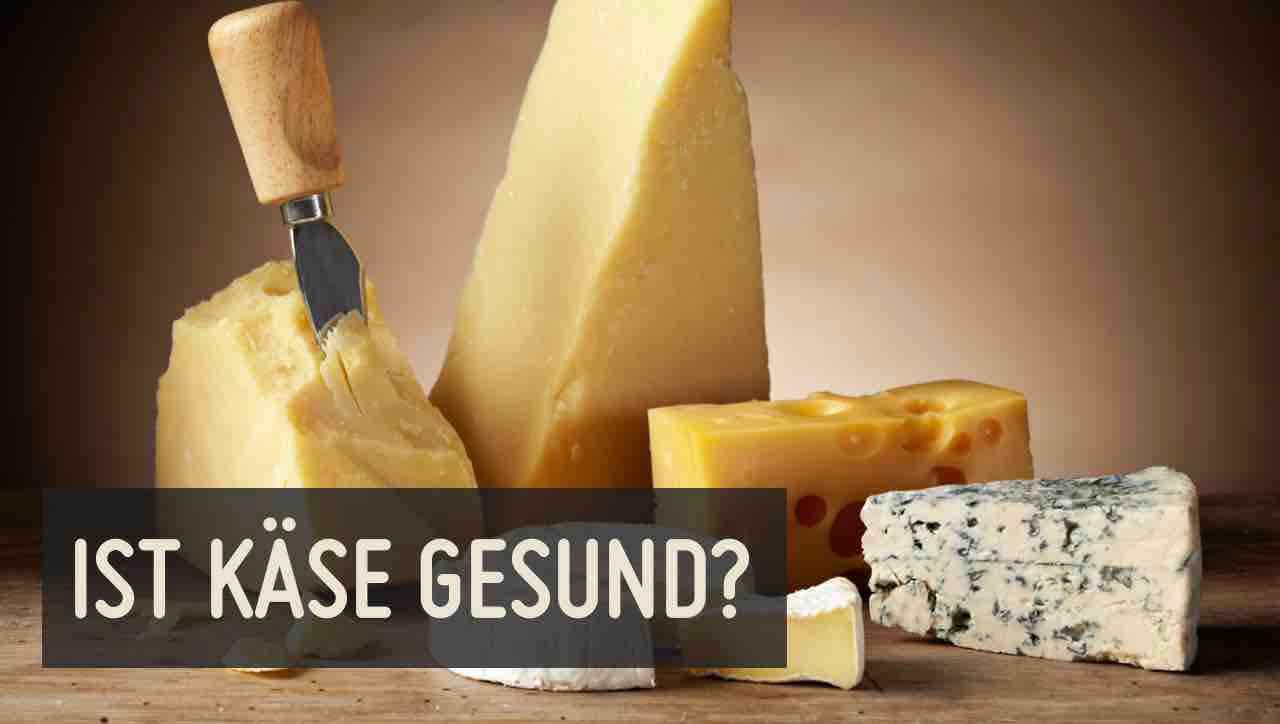 Käse – gesund oder ungesund?