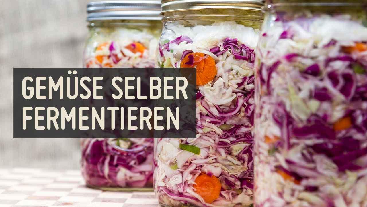 Karotten, Gürkchen oder Kraut: Was fermentierst du zuerst?