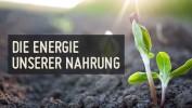Die Energie unserer Nahrung