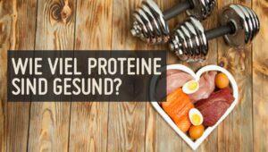 wie viel proteine