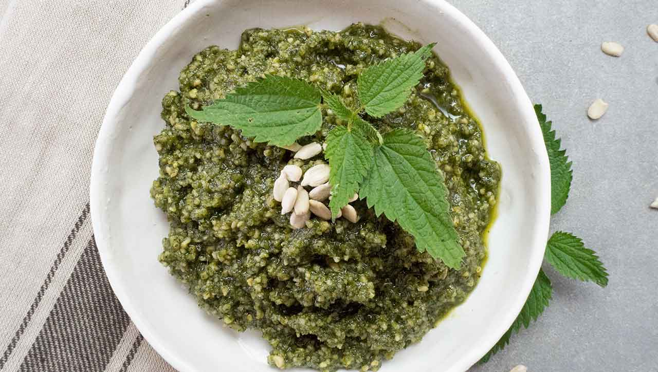 Von wegen Unkraut: Brennessel Pesto beweist wie lecker die gesunde Brennessel ist